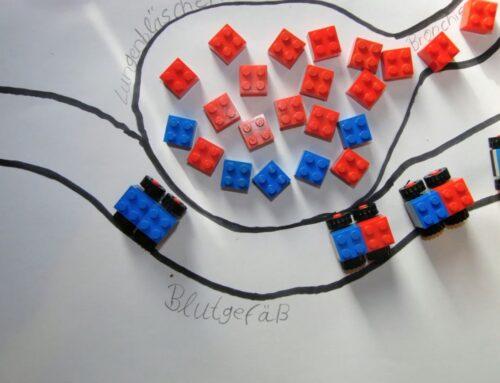 Ein Blick in den Distanzunterricht – Erklärvideos im Unterricht